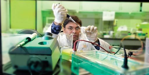 Dr. Nilkantha Sen