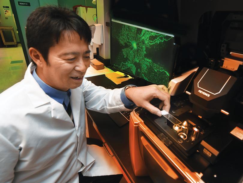 Dr. Tohru Fukai