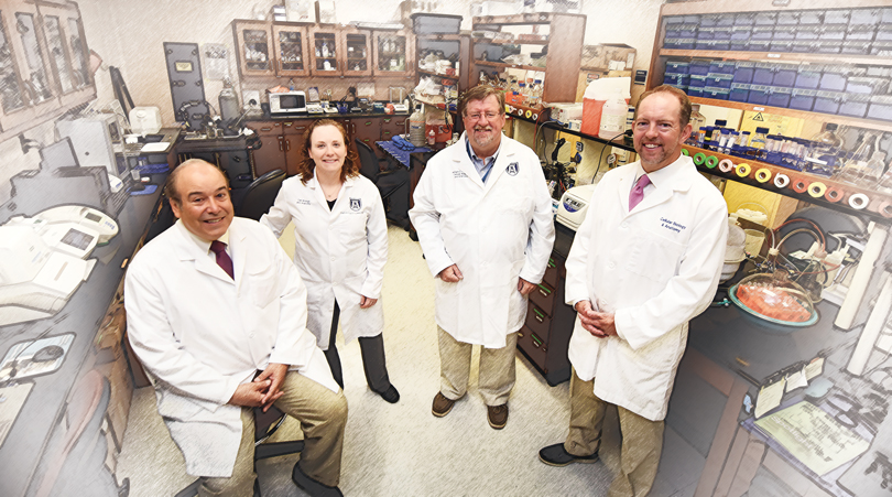 (from left) Program Project leads Drs. Isales, McGee-Lawrence, Hill and Hamrick