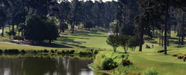 Forest Hills Golf Course Photo by Phil Jones