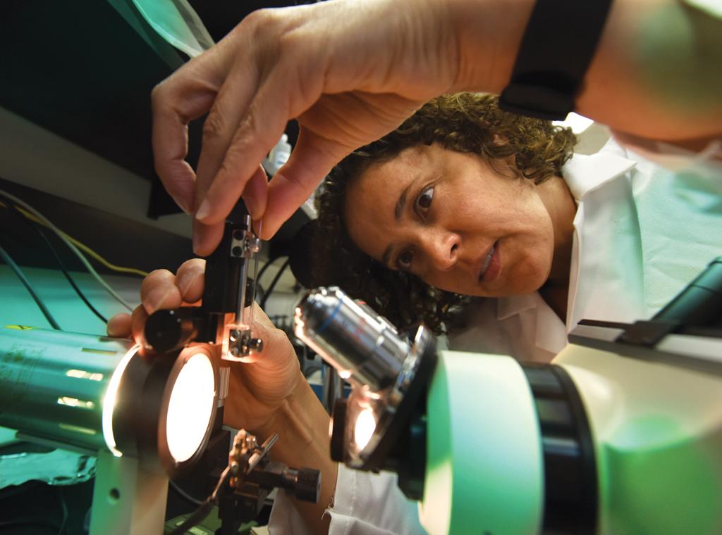 Dr. Jessica A. Filosa