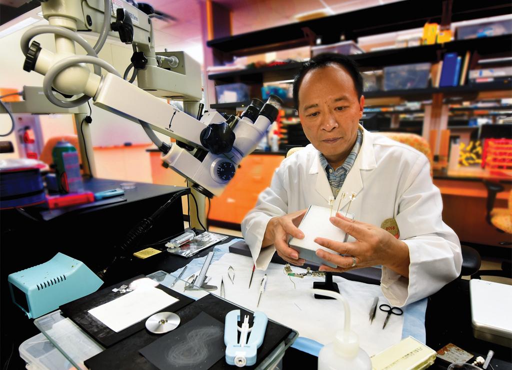 Dr. Joe Z. Tsien
