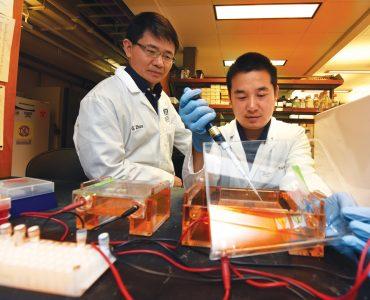 Drs. Gang Zhou and Zhi-Chung Ding