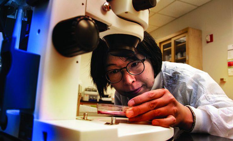 Dr. Maiko Suzuki