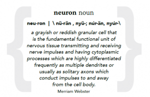 picture of text that says: neuron noun neu· ron | \ nü-rän , nyü-; nu̇r-än, nyu̇r-\ a grayish or reddish granular cell that is the fundamental functional unit of nervous tissue transmitting and receiving nerve impulses and having cytoplasmic processes which are highly differentiated frequently as multiple dendrites or usually as solitary axons which conduct impulses to and away from the cell body. - Merriam Webster